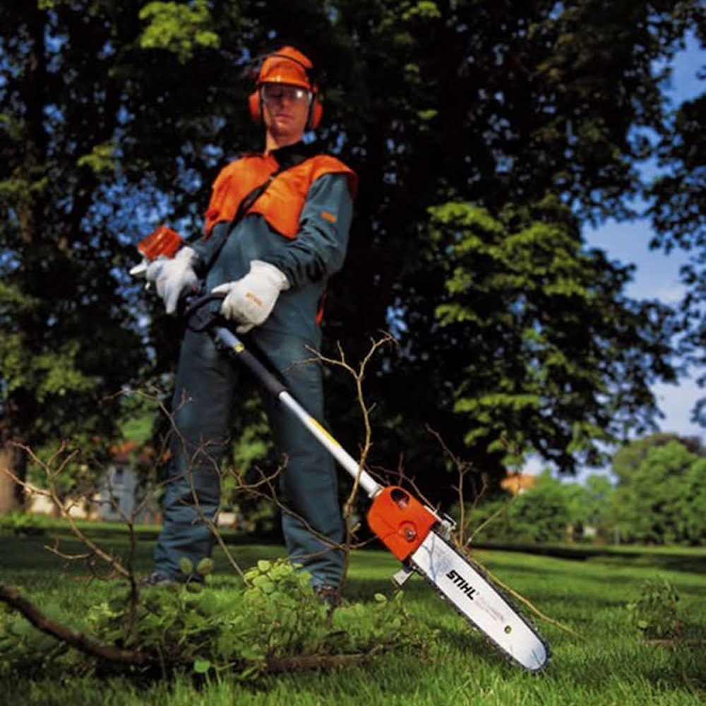 Tree Pruning Tips For Your Garden