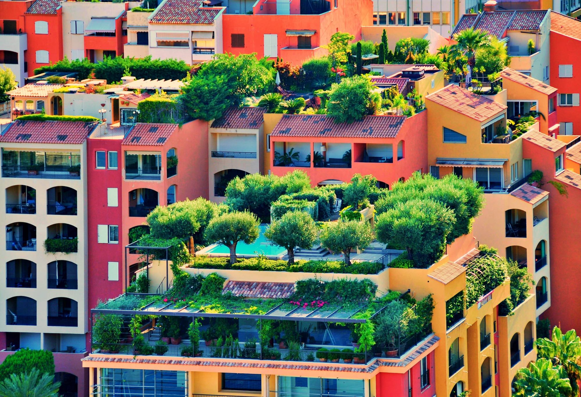 Tips for Making Budget-Friendly Rooftop Garden