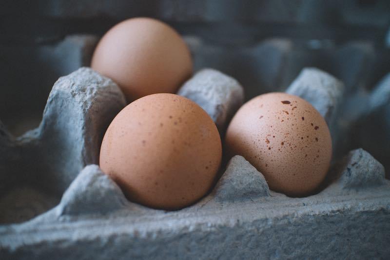 protein eggs